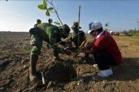 Gerakan menanam pohon – ANTARA News Bali
