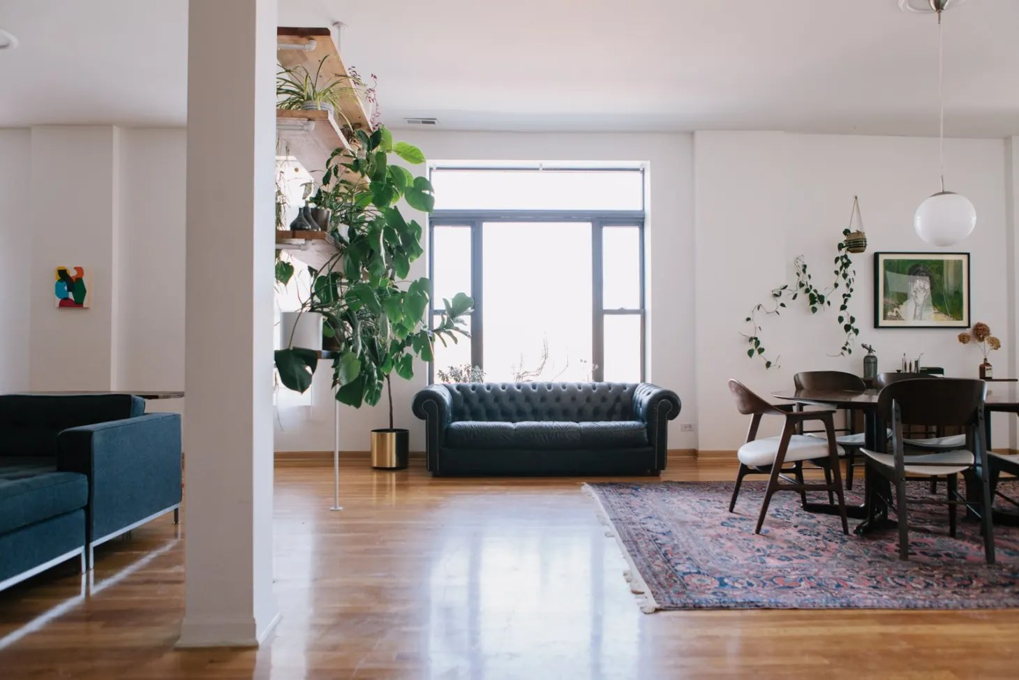 The Best Room Dividers For Your Home Apartment Therapy