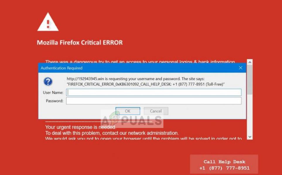 Kritischer Fehler von Mozilla Firefox