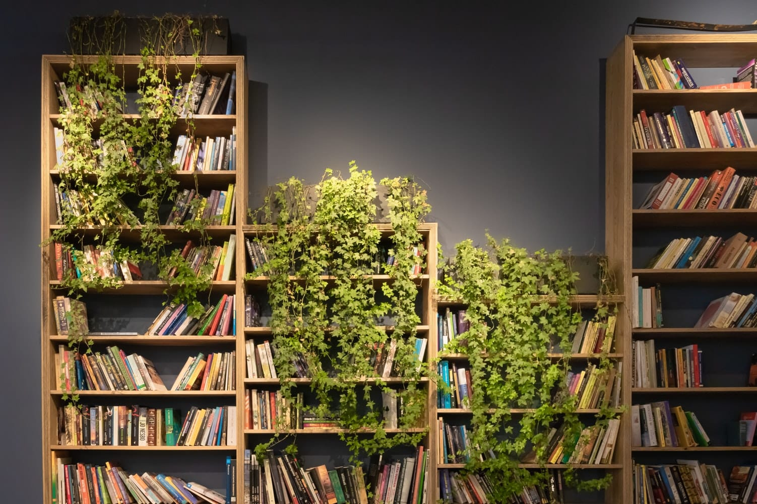 13 Best Bookshelves You Can Buy Online And Actually Want Architecture Lab