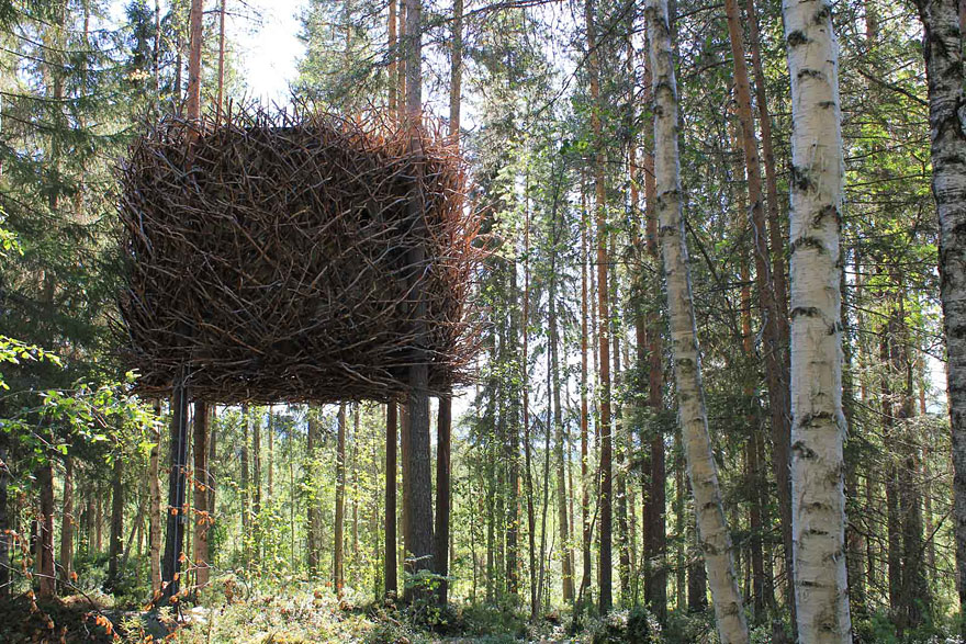 kuća na drvetu kao gnezdo