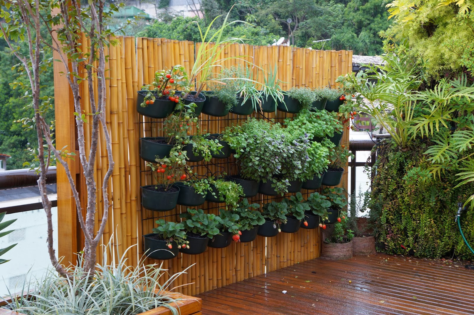 30 Stunning Low Budget Diy Garden Pots And Containers