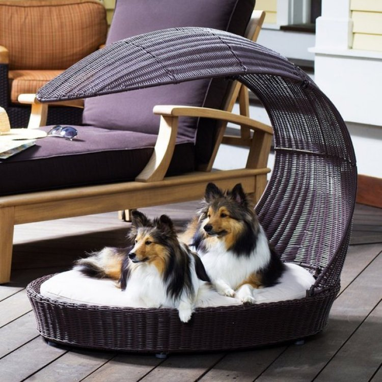 37-Outdoor-Dog-Chaise-Lounger