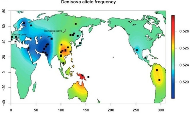 Global map of Denisovan gene frequency in modern human genomes