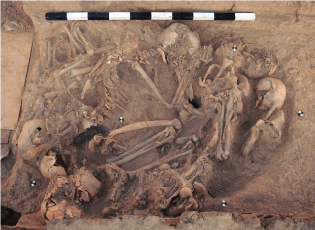 Co-mingled skeletons found buried under a platform in a house. This treatment is typical of how people buried their dead, though usually there were fewer skeletons than you see here. Often city dwellers would dig up skulls and rebury them in other houses. Archaeologists believe this ritual had spiritual and historical elements, and it was a way of remembering the past.