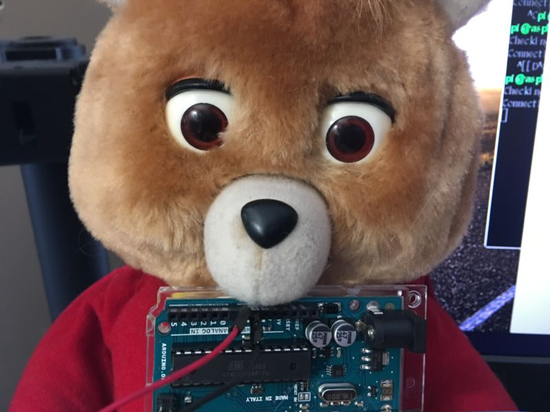 Tedlexa, an IoT stuffed bear.