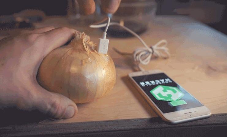 onion-iphone.jpg
