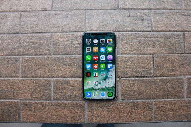 The iPhone X