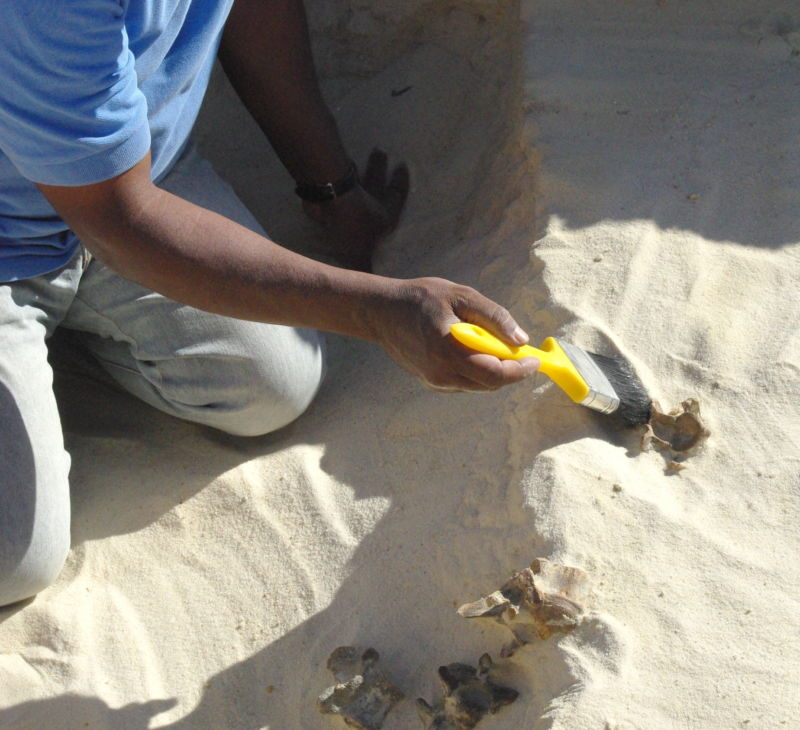 Archaeologists find 300,000-year-old stone tools in Saudi Arabia