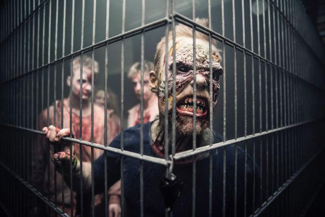 """""""Scare actors"""" in zombie makeup exhibit cues of hostility and contagion."""