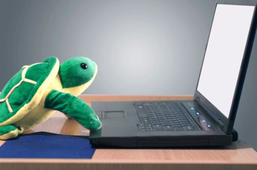 "Artist's impression of state-sponsored ""Sea Turtle"" hacking campaign."