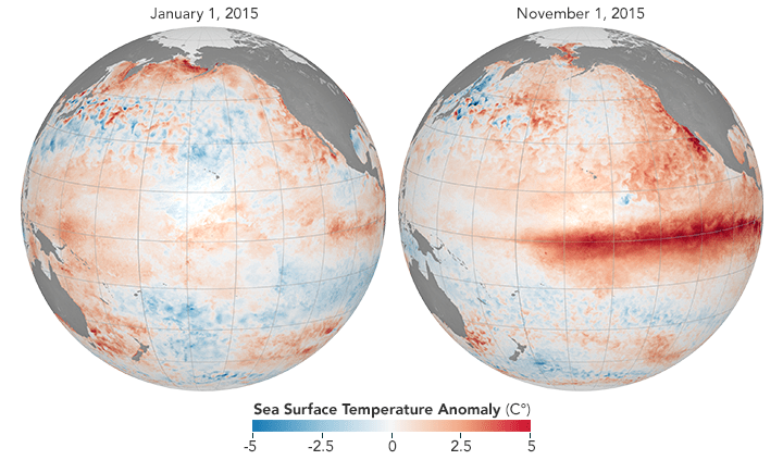 A strong El Niño developed in 2015, visible here from temperature departures from average.