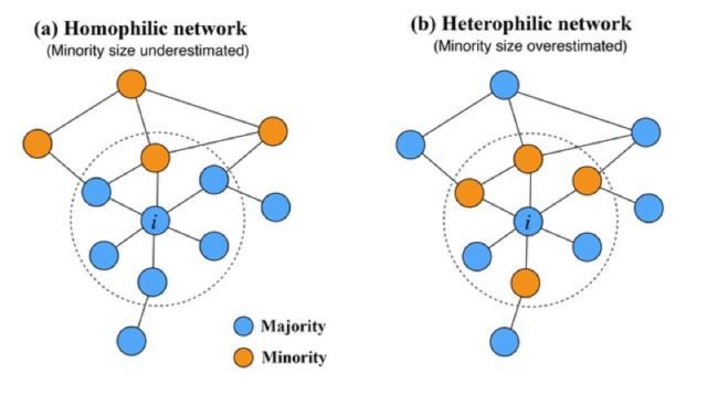 Perception bias in hemophilic and heterophilic networks.