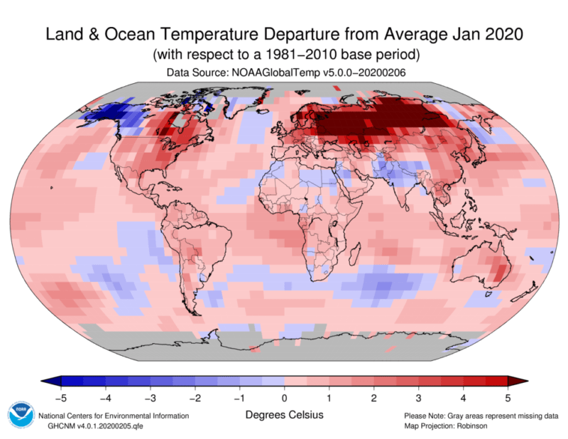 January was warmest on record for the globe