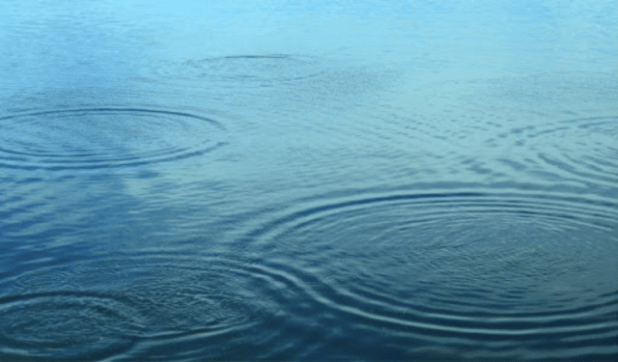 Wave on a pond.  Note the thickness of the wave ring.