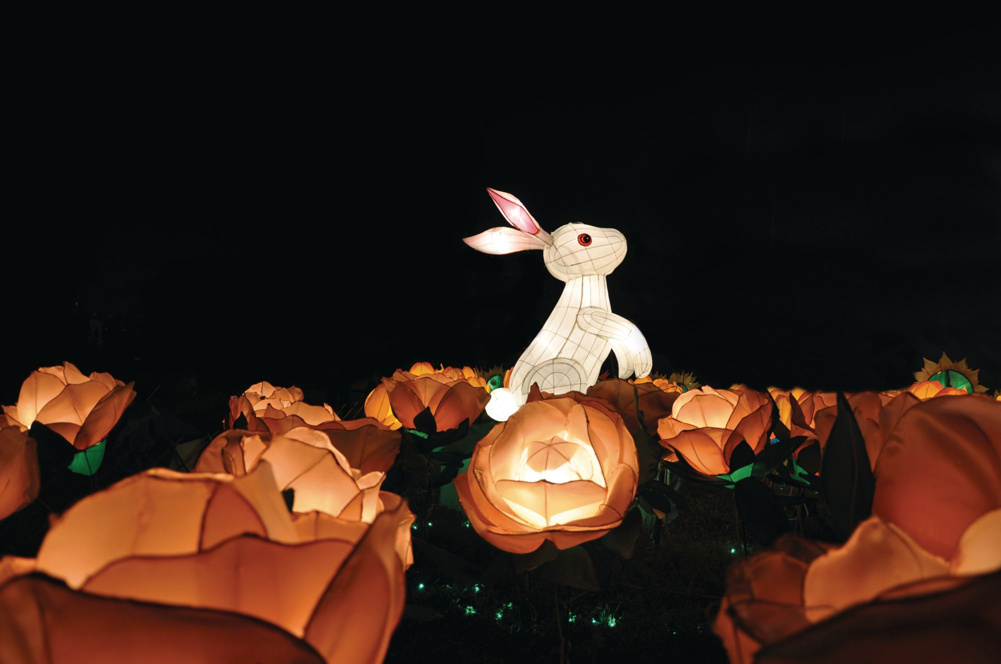 5 Things To Know About The Mid Autumn Festival