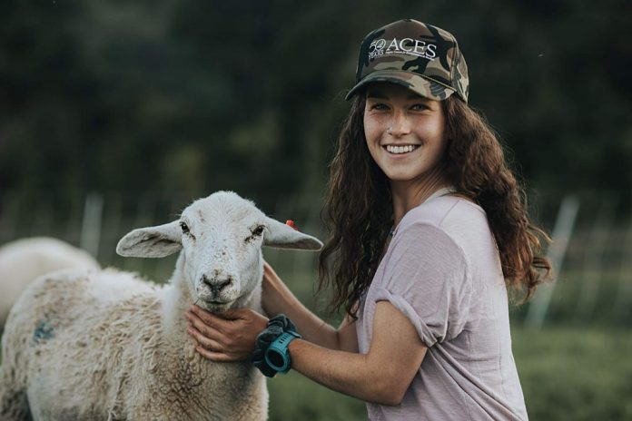 Maddi Sorrentino tends to a member of the flock at Rock Bottom Ranch.