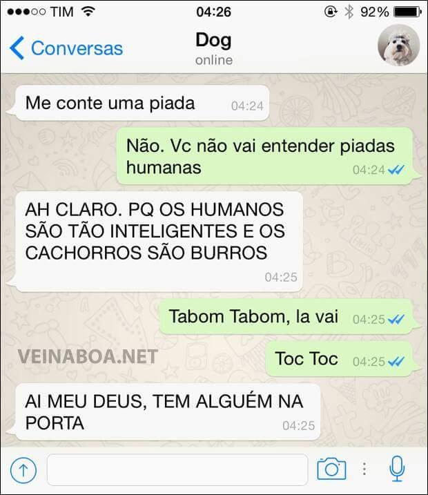 dogw1