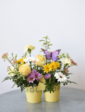 Easter Flowers La Grande  OR   FITZGERALD FLOWERS Bucket of Blooms in La Grande  OR   FITZGERALD FLOWERS
