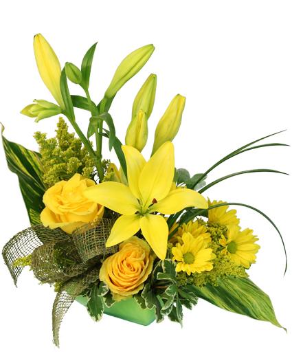 Flower Shops Weslaco Texas
