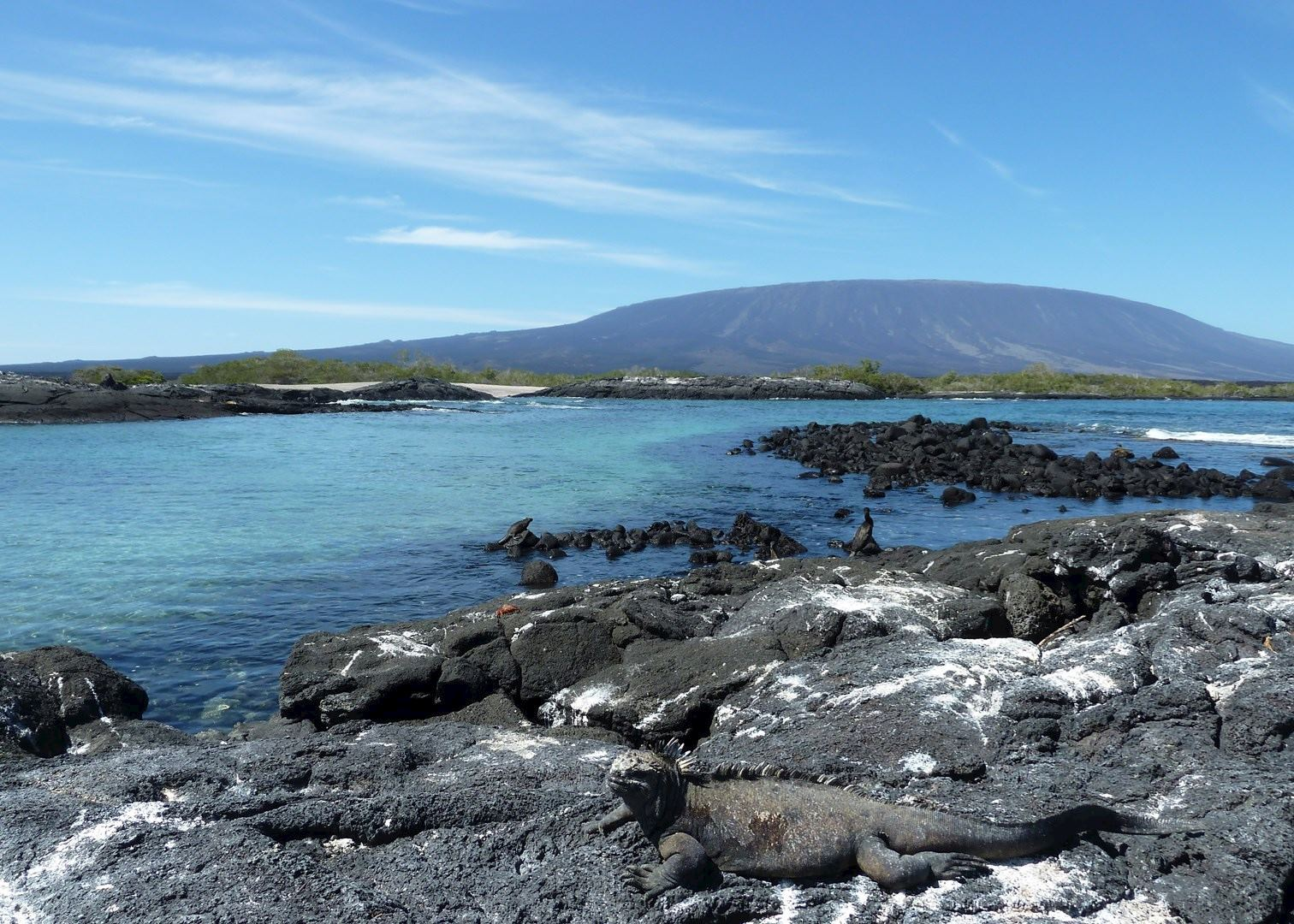 Visit The Galapagos Islands On A Trip To Ecuador