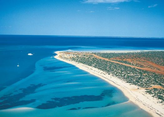Visit Shark Bay on a trip to Australia | Audley Travel