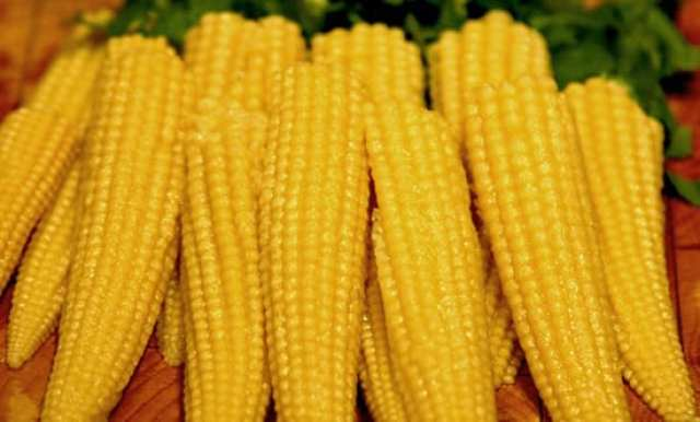 Image result for baby corn