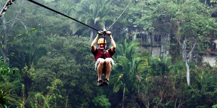 Image result for canopy el eden