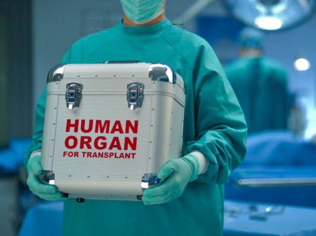 Penis Transplant Surgery 30