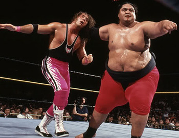Image result for wrestlemania 10