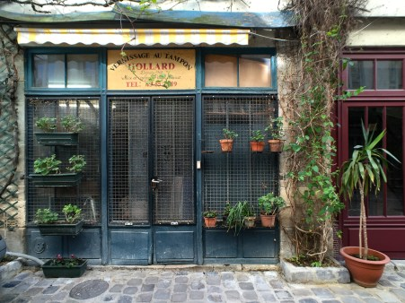 Planters line the front of a store in Paris, France.