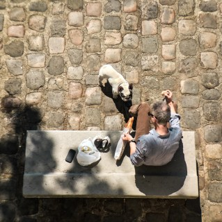 A french bulldog beggs a man for bread as he eats his lunch along the Seine River in Paris, France.