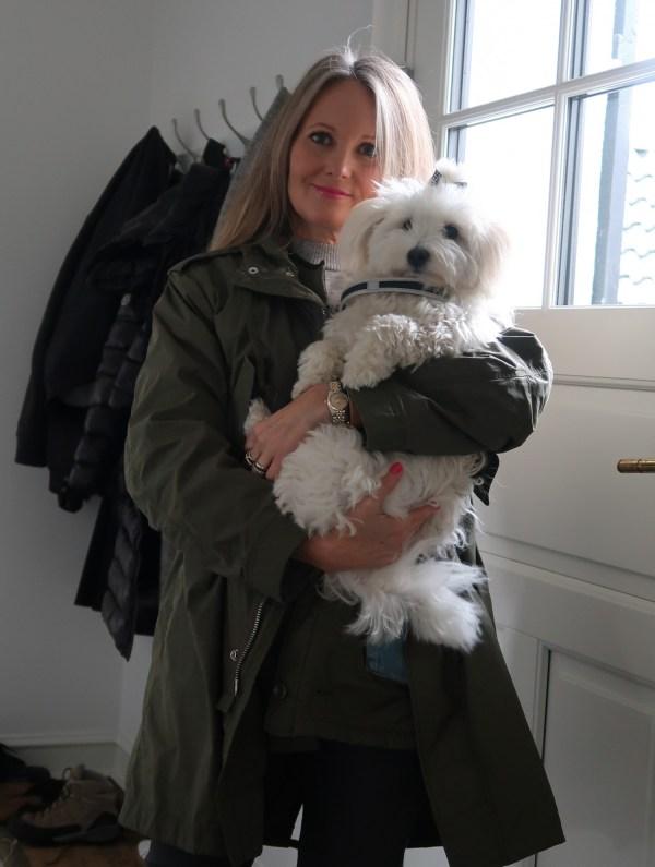 blog-hund