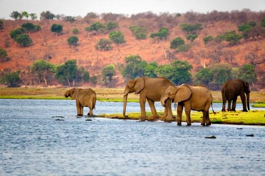 Botswana   History - Geography   Britannica