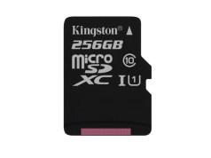 Kingston, 256 GB, microSD