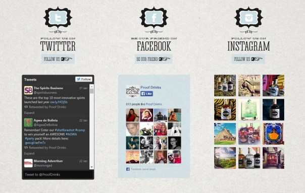 Social Media Integration within a Website 4