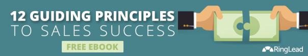 sales guiding principles