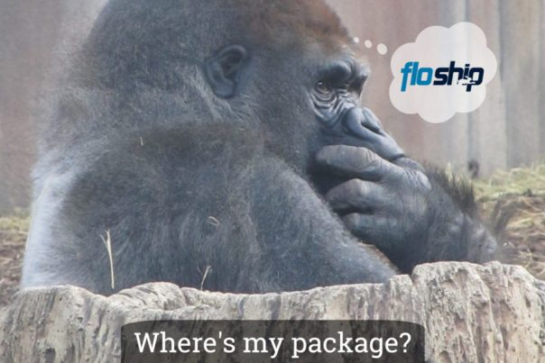 Floship Ecommerce Delivery Logo with Gorilla