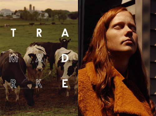 Jamie Hawkesworth's autumn / winter 2014 campaign for Trademark | Source: Courtesy