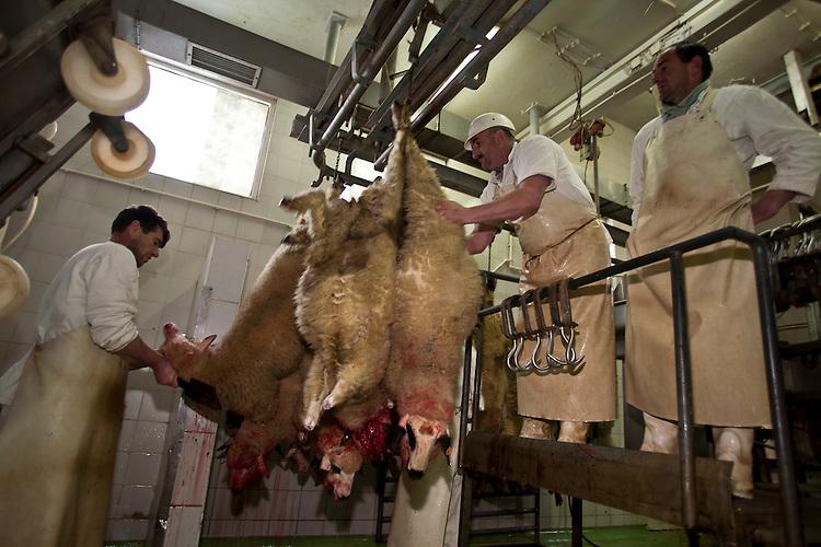 Dolcett Meat Girl Slaughterhouse Caption