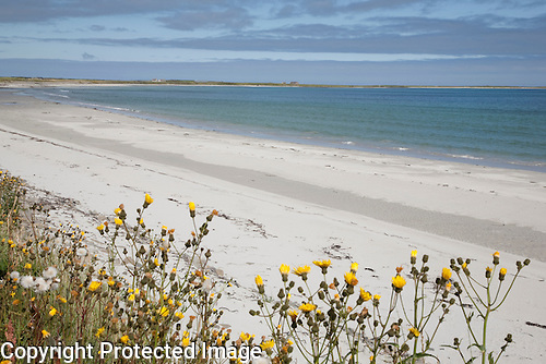 The beach of Lopness Bay on the Isle of Sanday in the Orkney Islands, Scotland