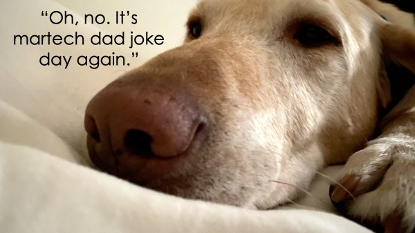Martech Dad Jokes 2021