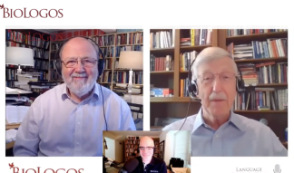 N. T. Wright Identifies 'Knee-Jerk' Reactions Christians Have When Tragedies Occur and Shares What Response Christians Should Have to the Coronavirus