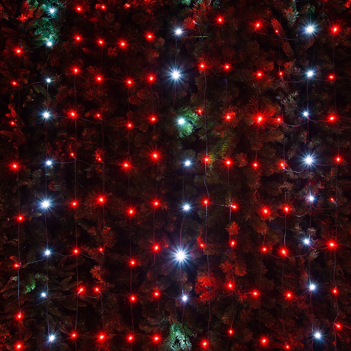 LED Net Lights 4 X 6 LED Net Lights 100 Twinkle Red