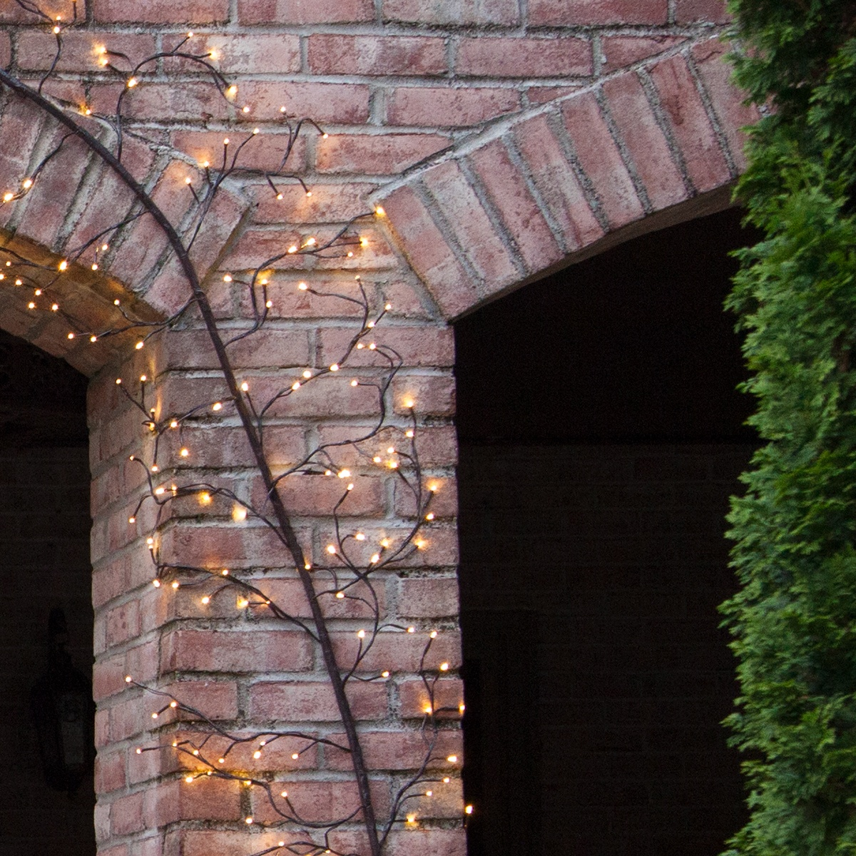 Brown Climbing Vine Lighted Branches With Warm White Led