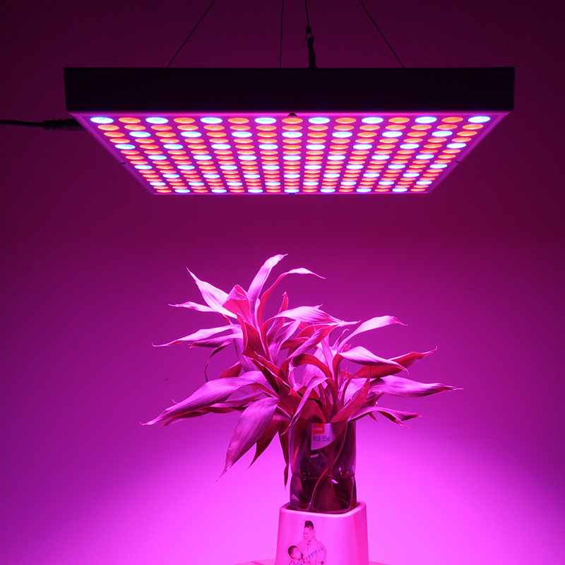 Best Chinese Led Grow Light