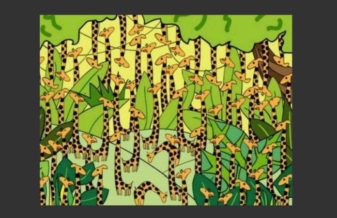 Reto viral | Encontrar la serpiente escondida entre variasjirafas