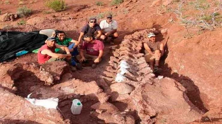 Hallan un dinosaurio en Argentina que podría ser el titanosaurio más antiguo  de la historia - Planeta Vivo