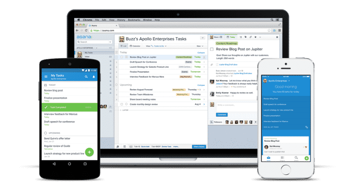 A Guide to Using Asana for Increasing Your Team's Productivity
