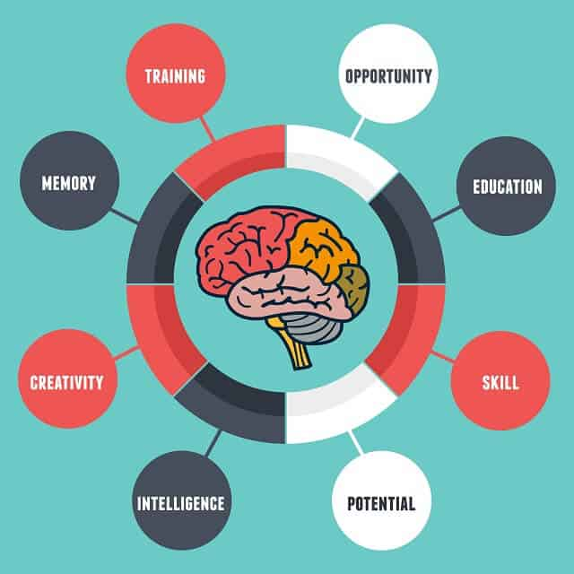 Aging and Cognition: Mental Processes, Self-Awareness and Interventions